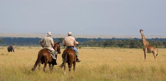 kenya-horseback